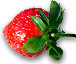 jordgubbe.jpg