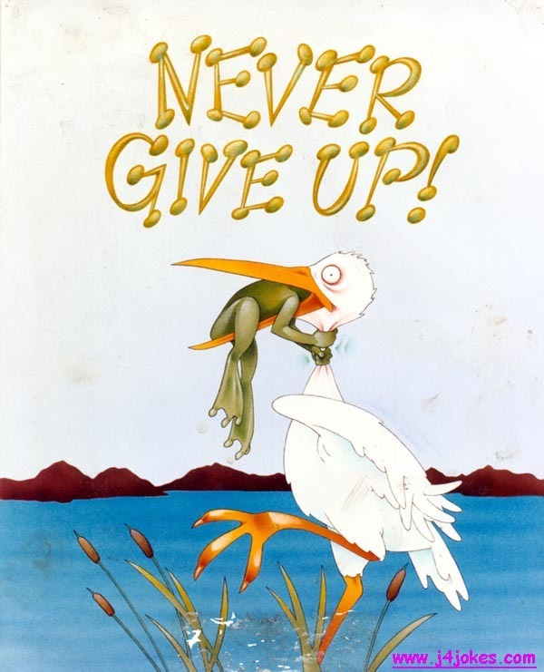 never-give-up-l.jpg