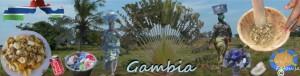 gambiamix
