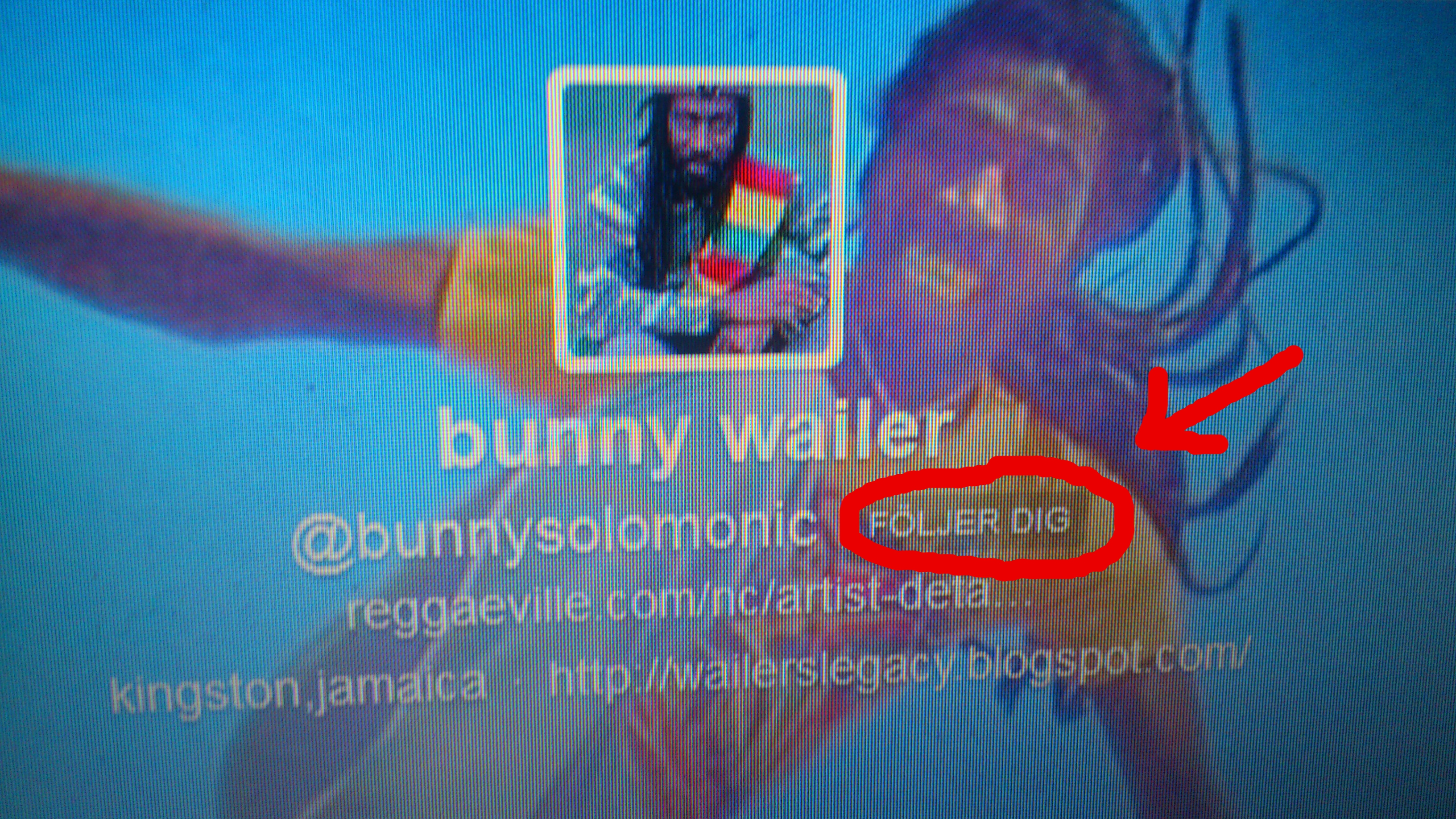 bunnywailer@twitter