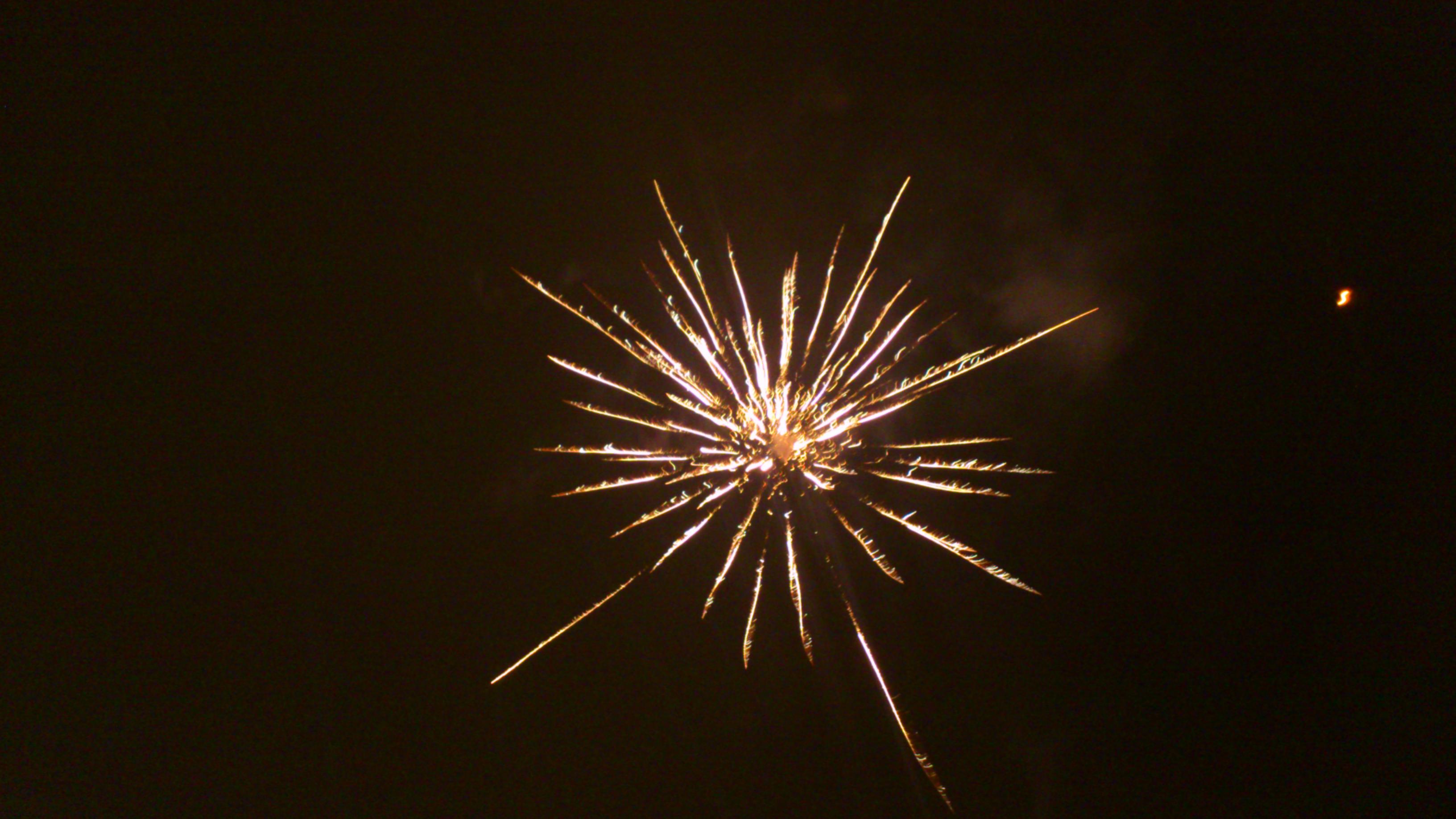 Januari 2013 095