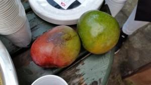 Färska mango - direkt från Gambia