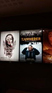 """Filmaffischen från filmen """"Tjuvheder"""" Foto: Fatou Touray"""